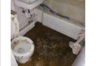 Clogged Toilets Bathtubs Showers The Drain Medic Drain Sewer with sizing 1000 X 1294