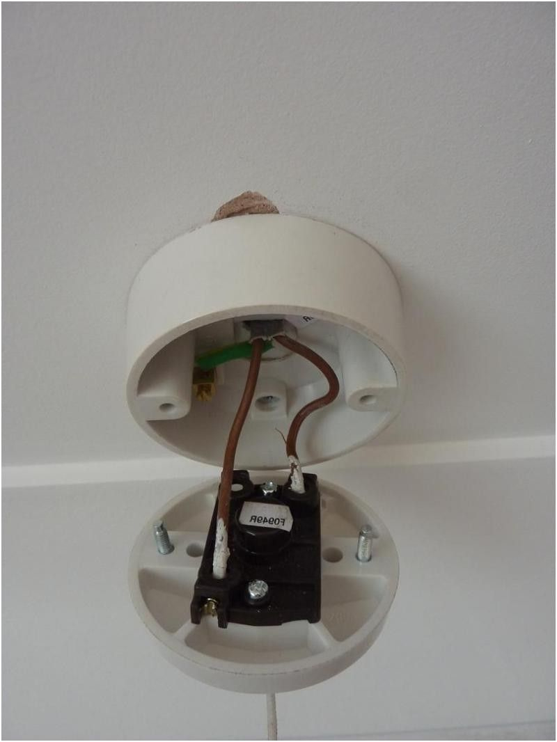 Wiring Diagram For Bathroom Light Pull Switch Wiring intended for size 800 X 1066