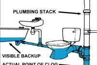A Clogged Plumbing Stack Can Affect Many Of Your Fixtures inside sizing 1600 X 1200